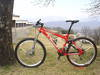 foto de Vendo SPECIALIZED EPIC M5