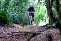 foto de video. buen downhill